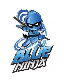 Blue Ninja 70VG 70ml